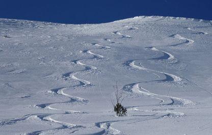 Skifahrer-Spuren im Tiefschnee
